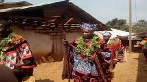 cameroon traditional rulers