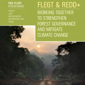 FAO-EU Flegt program