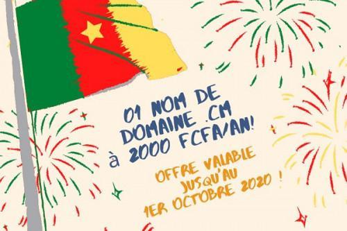 Cameroon: Between July 1st-October 1st, 21,476 New Users for the .cm Recorded-ANTIC