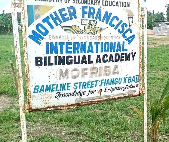 mother francisca international bilingual academy