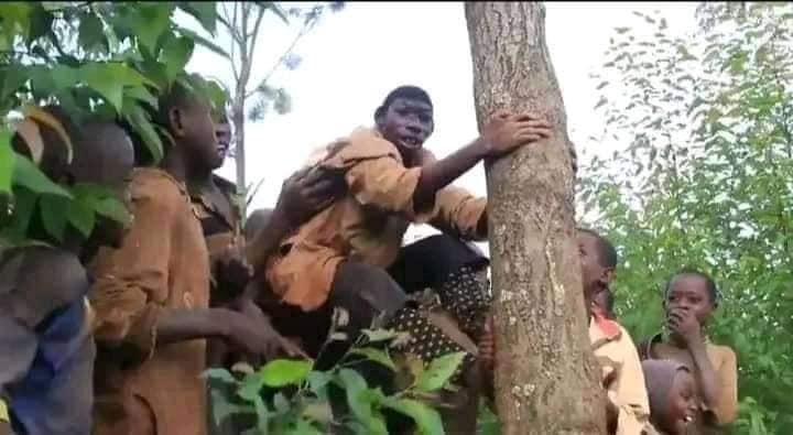 Rwanda: 21-year-old Boy Who Can't Speak, Feeds on Grass