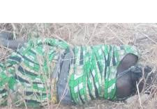 Suicide bomber neutalized in Far North Cameroon
