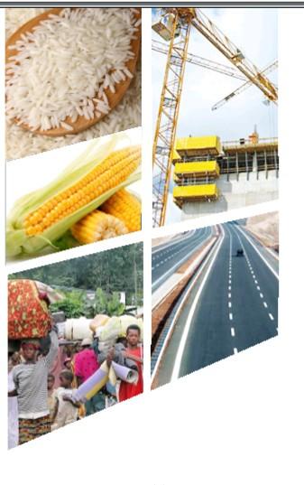 Cameroon 2021Citizen's Budget allocation