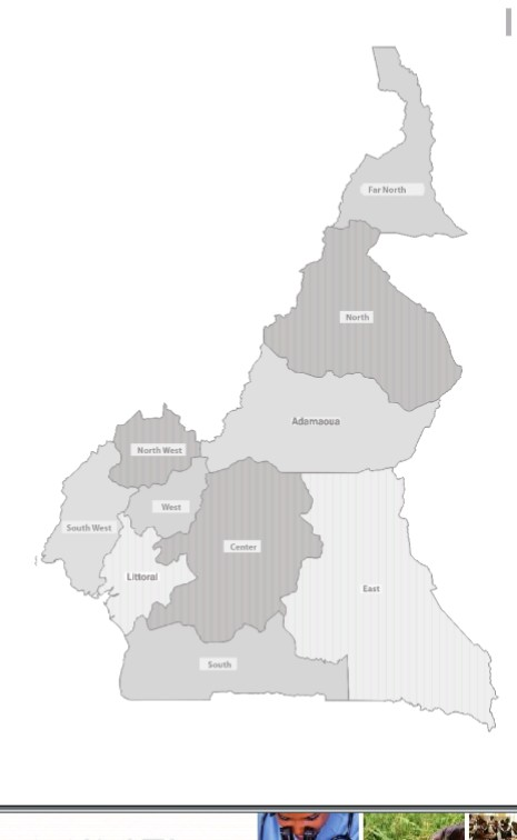 Cameroon regional Map